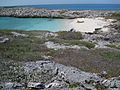 Bahamas 2009 (3426327402).jpg
