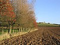 Baldersbury Hill Farm - geograph.org.uk - 278399.jpg