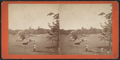 Ball Ground, Central Park, by Pach, G. W. (Gustavus W.), 1845-1904.png