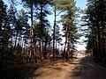Baltiyskiy rayon, Konigsberg, Kaliningradskaya oblast', Russia - panoramio (46).jpg