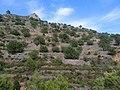 Bancals de pedra en sec del Rabosero, Borriol.jpg