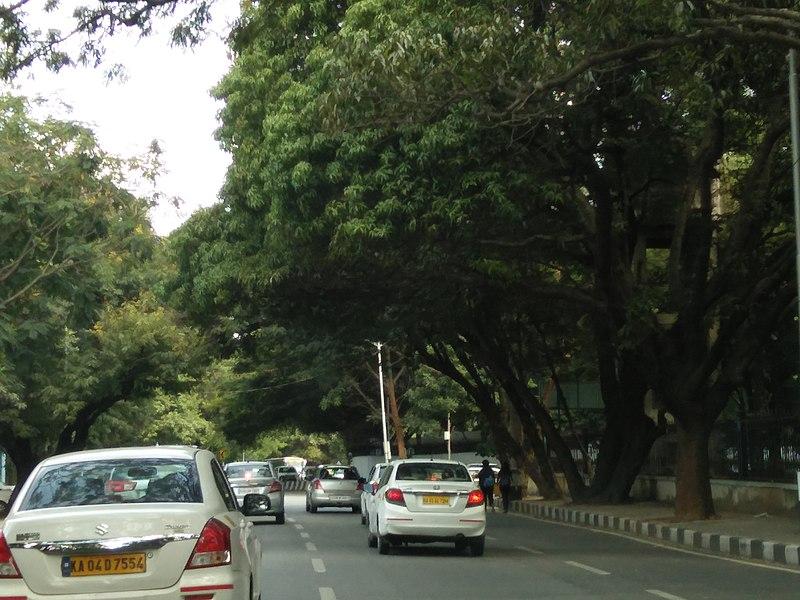 File:Bangalore street trees and traffic 3.jpg