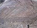 Baraboo Quartzite (upper Paleoproterozoic, ~1.7 Ga; Tumbled Rocks Trail, Devil's Lake State Park, Wisconsin, USA) 3 (18634384020).jpg