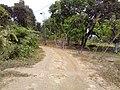 Barangay Malibo Matanda - panoramio (22).jpg