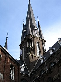 Basiliek Sittard.JPG