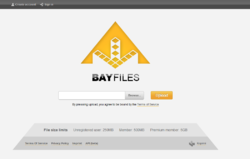 BayFiles frontpage.png