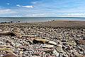 Bay of Fundy, New Brunswick, Canada (8169791550).jpg