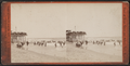 Beach scene and bathers, from Robert N. Dennis collection of stereoscopic views.png