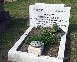 Beauty (dog) - Beauty's grave at the Ilford Animal Cemetery