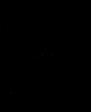 Beaivi - Beivve Sami Sun symbol