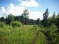 Belebeyevsky District, Republic of Bashkortostan, Russia - panoramio - Matveev Michail (12).jpg