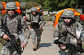Best Warrior Competition DVIDS31189.jpg