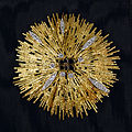 Betty Ford's gold brooch.jpg