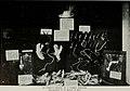 Bird-lore (1916) (14755042382).jpg