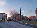 Blagnac - Avenue des Pins - 20101231 (1).jpg