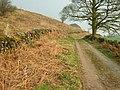 Blakelow Lane - geograph.org.uk - 380319.jpg