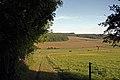 Blick ins Sachsenthal - panoramio (1).jpg