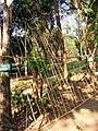 Bo Lek Nam Phi (Nam Pi iron mines) 09.jpg