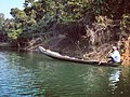 Boatman of Bangladesh.jpg