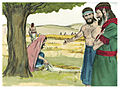 Book of Ruth Chapter 2-3 (Bible Illustrations by Sweet Media).jpg