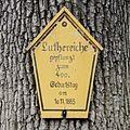 Boritz Luthereiche-01.jpg