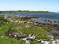 Boulders on the shore - geograph.org.uk - 1495069.jpg