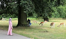 Markfield Institute student visiting Bradgate Park where she is watching deer graze nearby