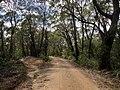 Braeside Trail - panoramio.jpg