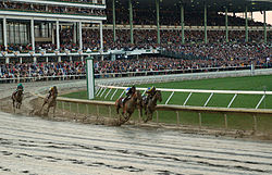 Thoroughbred horse racing at Monmouth Park Racetrack
