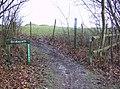 Bridlepath (sic) leaving Ditcham Woods - geograph.org.uk - 354157.jpg