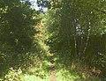 Bridleway from Elland Road to Binns Lane, Southowram - geograph.org.uk - 260853.jpg