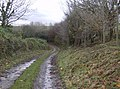 Bridleway north from Bincombe - geograph.org.uk - 621311.jpg