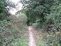 Bridleway to Nettledown - geograph.org.uk - 1526255.jpg