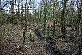 Brook in Worsley Covert - geograph.org.uk - 1192624.jpg