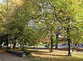 Brugge Baron Ruzettepark R12.jpg