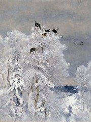 Black Grouse in a Treetop
