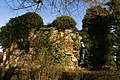 Bruz - Cicé - ruines château 03.jpg
