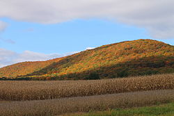 Buck Mountain in North Union Township