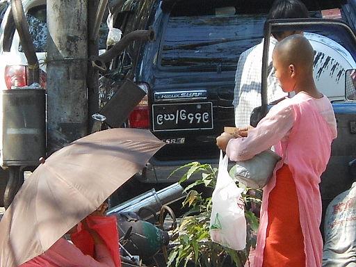 Buddhist Nuns (8393307339)