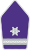 Bundesheer - Rank insignia - Wachtmeister.png