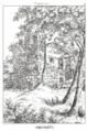 Burg Isenringen II.png