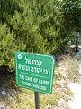 Burial Cave of Rabbi Yehuda HaNassi P1030759.JPG