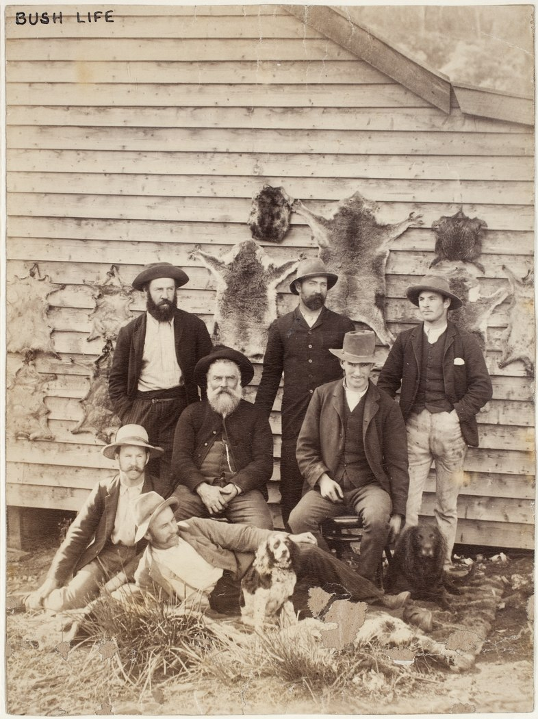 Bush men and dogs, with a wall of animal skins (including koala pelts), between 1870-1900