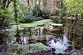 Bushy Park, Dublin -123655 (31204382005).jpg