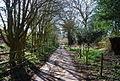 Byway to Buckhurst Farm - geograph.org.uk - 1803345.jpg