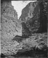 CANyON OF KANAB WASH, LOOKING NORTH, COLORADO RIVER - NARA - 524214.tif