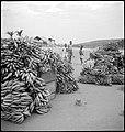 CH-NB - Belgisch-Kongo, Thysville (Mbanza Ngungu)- Alltagsszene - Annemarie Schwarzenbach - SLA-Schwarzenbach-A-5-26-079.jpg