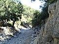 Cañon antes de llegar del Refugio - panoramio.jpg