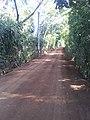 Camino de canton Amaquilco, Huizucar - panoramio.jpg