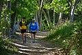 Camino de les Dous Cursa 7 Cims.jpg